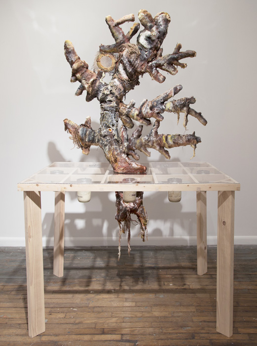 S.E. Nash The stability of sourdough ecosystem during time is debated 70 in. x 48 in. x 36 in. Wood, polyurethane foam, cardboard, sculptamold, burlap, acrylic paint, acrylic sheeting, glass jars, sourdough starters